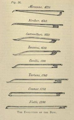 Evolution of the bow