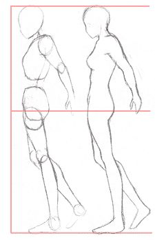 How to draw body proportions - Manga style.