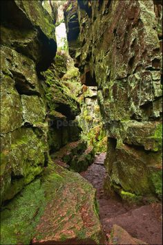 Luds Church in the Peak District and within the stone chasm is said to be the face of the Green Man in the stone looking down. Peak District England, Places To Travel, Places To See, British Travel, English Countryside, Fantasy Landscape, Green Man, Beautiful Places To Visit, Lake District