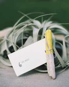 Driftwood escort cards