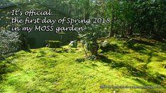 #landscaping #green #moss