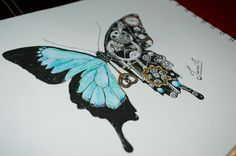 Mariposa mecánica Steampunk Drawing.  Butterfly.