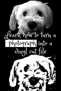 Learn how to turn a photograph into a vinyl cut file. I'm going to show you ho. - Learn how to turn a photograph into a vinyl cut file. I'm going to show you how to take a photogr - Silhouette Projects, Silhouette Design, Silhouette Cameo Vinyl, Inkscape Tutorials, Cricut Tutorials, Diy Poster, Cricut Air 2, Cricut Help, Cricut Craft Room