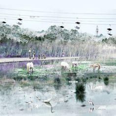 AA Review 2014: Yufei Li - Horse Wetland
