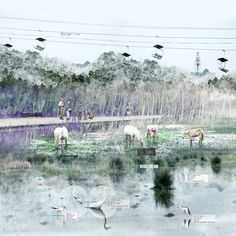 AA Review 2014: Yufei Li - Horse Wetland