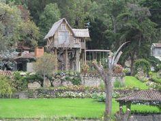 Tree House on Lake Atitlan