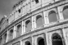 Rome, Italy. The Colosseum in all it's glory rendered in black and white. Architecture photography by Sonja Quintero at Fine Art America