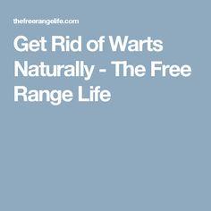 Get Rid of Warts Naturally - The Free Range Life