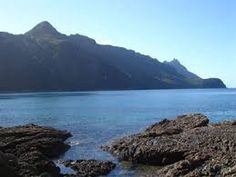 Image result for bream head reserve