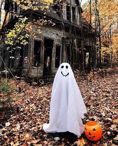 Days Until Halloween, Halloween Night, Spooky Halloween, Halloween Pumpkins, Happy Halloween, Halloween Decorations, Halloween History, Halloween Images, Halloween Quotes