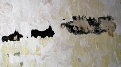 Feb 2016 - Marks on plaster wall House Foundation, Medieval Houses, Brecon Beacons, Listed Building, Plaster Walls, Wales, Park, Projects, Inspiration