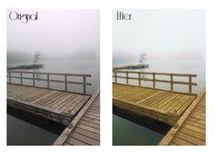 #foggy #spring