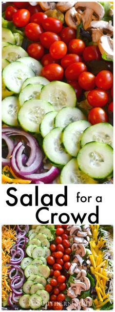 Fresh greens, loads of great veggies & toppings make feeding a crowd easy plus how to make the dressing and tips for serving.