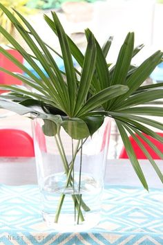 big green palm leaves on the table
