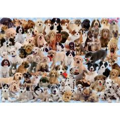 """Can you name all the puppy breeds in this 1000-piece jigsaw puzzle by Ravensburger? Finished puzzle 20""""x27"""".Ravensburger has been in the puzzle business for over 125 years. Their jigsaws feature - """"Soft-Click Technology"""" (correct pieces make a soft, audible click as they snap into place) - Unique puzzle pieces (piece shape is hand-drawn and precisely cut specially designed tools) - Puzzleboard that is sturdy and reliable and made from recycled materials."""