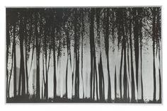 STAMPA SU ALLUMINIO cm.180x90. Franco Fontana