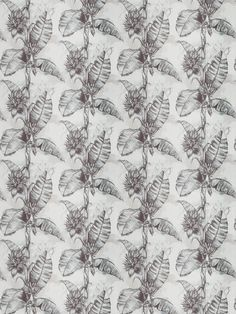 This muted tropical pattern full of blacks, whites and grey is a perfect addition to any interior. This contemporary design is Musa Paradis-White Black Pearl for The New York Botanical Garden Collection by Vervain Modern Tropical, Tropical Pattern, Tropical Leaves, Leaf Prints, Traditional Design, Botanical Gardens, Contemporary Design, Aqua, Fabrics