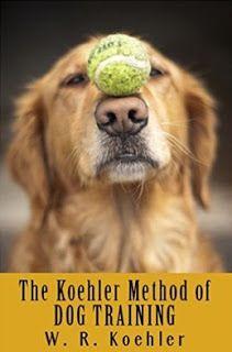 Best golden retriever puppy training book