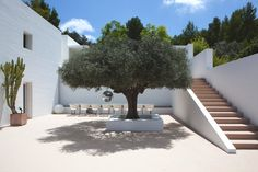 Glitter ball in a tree! House hunting in Ibiza Hotel Am Meer, Landscape Design, Garden Design, Spanish Courtyard, Casa Patio, Mediterranean Homes, Garden Inspiration, Exterior Design, Open Plan