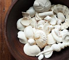 Coastal Decor, Beach, Nautical Decor, DIY Decorating, Crafts, Shopping | Completely Coastal Blog: 30 Seashell Collection Display Ideas