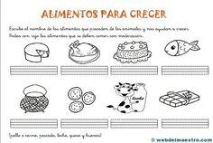 los alimentos para 1º de primaria
