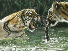 Fighting Tigers - Lesley Harrison Wildlife Animal Paintings