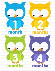 Month by month onesie stickers.