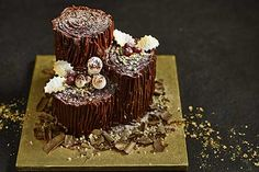 Collection Tree Trunk Yule Log