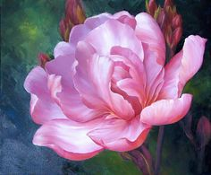 Maher Art Gallery: Marianne Broome