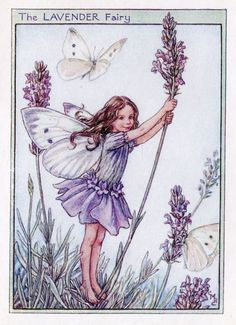 Lavender Flower Fairy Vintage Print c1950 Cicely by TheOldMapShop