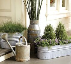 """Galvanized Metal Tubs, Buckets, & Pails as Plantersk.  Has a """"together"""" look without being """"matchy matchy""""."""