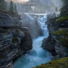 Athabasca Falls, Jasper NP, Canada. How in the world did we miss this?? Apparently we drove right by these falls on our way up the Ice Fields Parkway between Banff and Jasper.