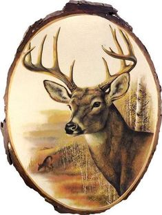 Whitetail Buck Rustic Cedar Plaque,Whitetail Buck Rustic Cedar Plaque How To Make Wood Art ? Wood art is generally the task of surrounding around and inside, provided that the to. Wood Burning Stencils, Wood Burning Crafts, Wood Burning Patterns, Wood Burning Art, Deer Pictures, Whitetail Bucks, Whitetail Deer Hunting, Deer Art, Pyrography