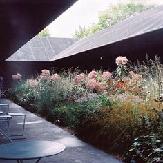 On warm summer evenings we're dreaming of the @serpentineuk in 2011, ... a secret garden in the wild city 🌾 @peter_zumthor_ #serpentinepavilion #peterzumthor