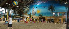 Voel het zand tussen je tenen en daag elkaar uit met een potje beachvolleybal, beachsoccer of footvolley. Moe van al die zomerse sportiviteit? Met een flink strandfeest in de tropische omgeving van The Beach kom je helemaal bij. Bij mooi weer geniet je van de buitenlucht en als het regent blijf je lekker binnen. Bij sport & event center The Beach is het altijd zomer! de entree is helemaal gratis. Adres: Oosteinderweg 247, 1432 AT Aalsmeer