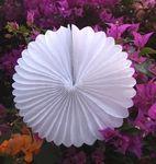 """12"""" White Tissue Paper Flower Rosette Fan Decoration (6 PACK) - 3.35"""