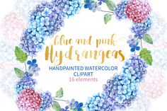 Watercolor Hydrangea Clip Art Floral by Annakristal on @creativemarket