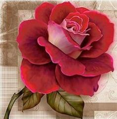 Since I would love a Rose on the logo/business cards; this one seems a little big and the color is too pale for what I'm picturing. Vintage Diy, Vintage Roses, Pictures To Paint, Painting Tips, Botanical Art, Art Floral, Belle Photo, Pansies, Pink Roses