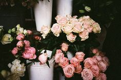 wish i got this many roses someday