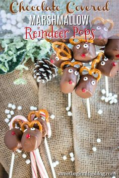 These adorable Chocolate Reindeer Marshmallow Pops, with their candy eyes and pretzel antlers, will be on every kid's wish list this holiday season!    #chocolatereindeer #marshmallowpops #dessertpops #ChristmasSweetsWeek #SweetBeginningsBlog