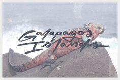 2013-BW-Galapagos 2.jpg