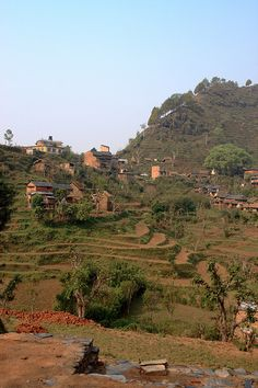farmed terraces, Bandipur, Nepal.  Photo: fcrozat, via Flickr