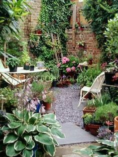 From my board small back gardens: Pic: paved garden / Magic Garden Small courtyard garden with seating area design and layout 38 - Rockindeco Urban garden, London - use old ladder as trellis for tomatoes & peas Urban gardening using an old ladder for a tr Small Back Gardens, Small City Garden, Small Courtyard Gardens, Small Courtyards, Small Garden Design, Outdoor Gardens, Courtyard Design, Small Back Garden Ideas, Courtyard Ideas