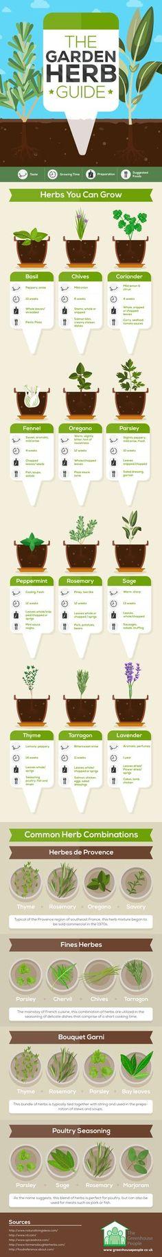 The Garden Herb Guide #Infographic #Gardening