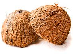 The Fat-Burning Fat: The Coconut Is Nature's Premiere Thermogenic! - Coconut Oil - Bodybuilding.com