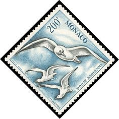 Monaco, Airmail, 1955-57, Birds complete with perf varieties (Scott C41-C44), 7…