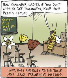 flower humor - keep your petals closed Funny Cartoons, Funny Comics, Funny Jokes, Hilarious, Adult Cartoons, Cartoon Humor, Hubert Reeves, Online Comics, Science Jokes