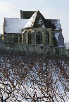 Clos in Oeuilly #champagne #Tarlant #vineyards