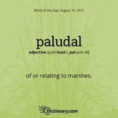 Today's Word of the Day is paludal. #WordOfTheDay #language #vocabulary