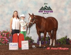 Lily Richardson & Chips Heart, Youth 13 and Under Champions! NW Emerald, Monroe WA 2014 Trainer Paige Stroud